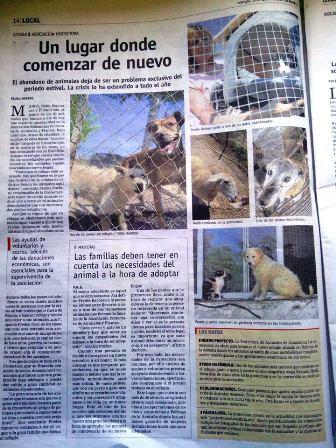 REPORTAJE EN LA GACETA SOBRE ASPAP