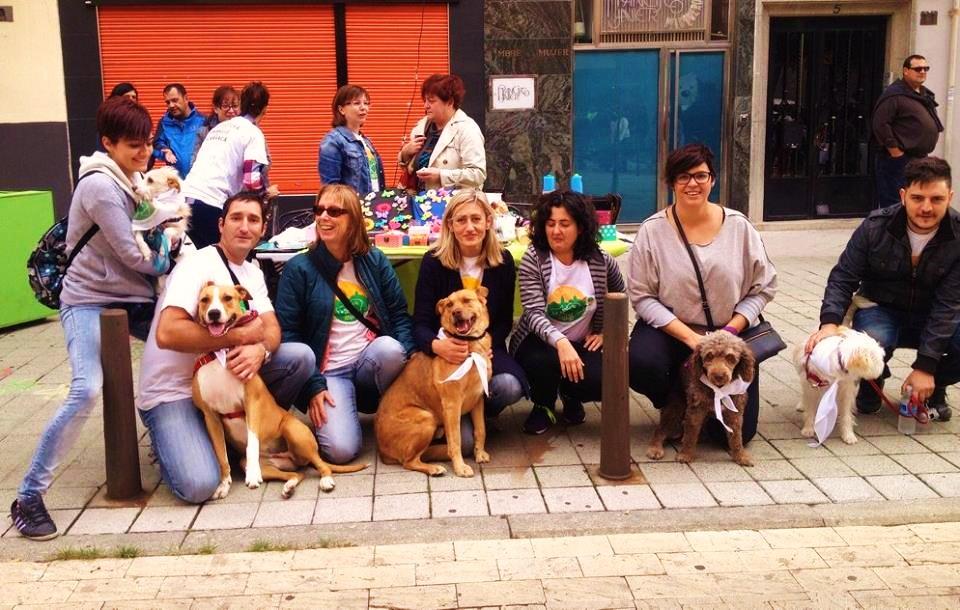 4 DE OCTUBRE DÍA MUNDIAL DE LOS ANIMALES