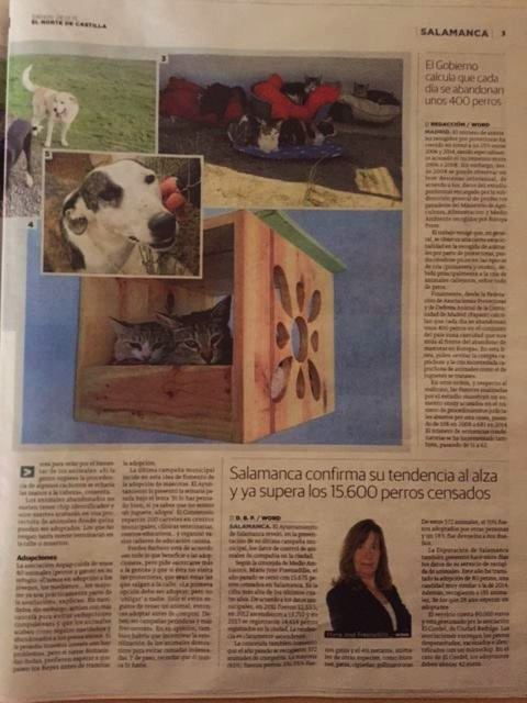 MAGNÍFICO REPORTAJE DE ASPAP, PROTECTORA DE ANIMALES DE SALAMANCA, EN EL PERIÓDICO EL NORTE DE CASTILLA