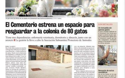 LOS GATOS DEL CEMENTERIO DE SALAMANCA ESTRENAN «CASA»
