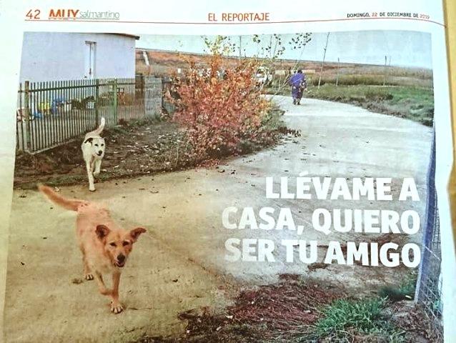 ASPAP: REPORTAJE EN LA GACETA DE SALAMANCA