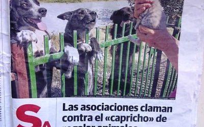REPORTAJE DE ASPAP en «El Norte de Castilla»