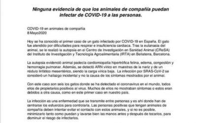 COMUNICADO AVEPA: LOS ANIMALES DE COMPAÑÍA NO TRANSMITEN EL COVID-19 A LAS PERSONAS