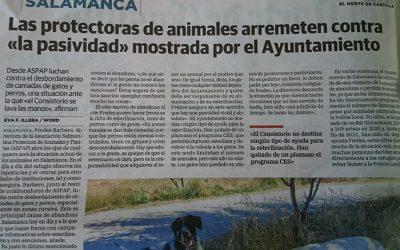 NUEVO REPORTAJE EN EL NORTE DE CASTILLA